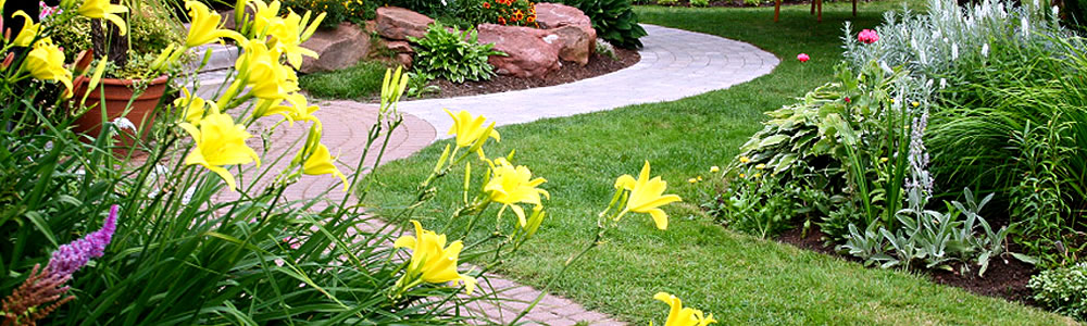 lawncare services banner image